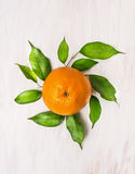 Orange fruits with green leaves on white wooden background Stock Images