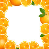 Orange Fruits Royalty Free Stock Images