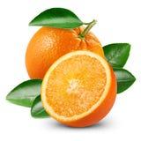 Orange fruits with leaf Royalty Free Stock Photo