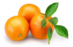 Orange fruits with leaves isolated on white background + clipping Royalty Free Stock Images