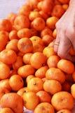 Orange fruits in the market Royalty Free Stock Photos
