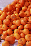 Orange fruits in the market Stock Image