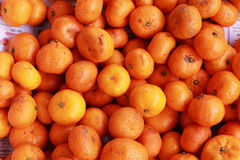 Orange fruits in the market Royalty Free Stock Photos