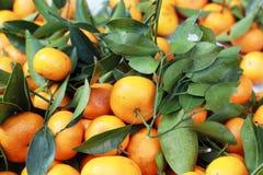 Orange fruits in the market Royalty Free Stock Photo