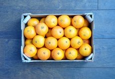 Orange fruits Stock Image