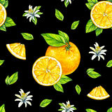 Orange fruits ripe with green leaves. Watercolor drawing. Handwork. Tropical fruit. Healthy food. Seamless pattern for design.  Royalty Free Stock Photography