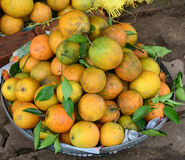 Orange fruits for sale in Hoa Binh, Vietnam.  Stock Photos
