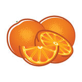 Orange fruits and slices Stock Photography