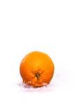 Orange fruits and splashing wate Royalty Free Stock Photo