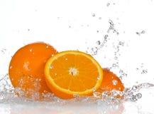 Orange fruits Royalty Free Stock Photo