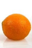 Orange fruits and Splashing water Isolated on white Stock Image