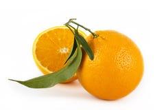 Orange fruits on white Stock Photos