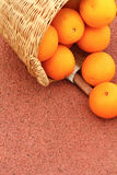 Orange fruits in wicker basket Royalty Free Stock Image