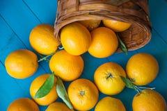 Orange frukt Fotografering för Bildbyråer