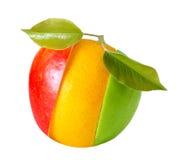 Orange frukt för blandat äpple arkivbilder