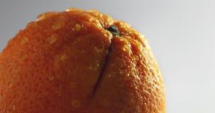 Orange frukt med vattendroppar lager videofilmer