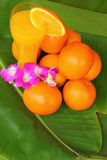 Orange fruktsaft Arkivfoton