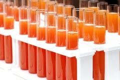 Orange fruktsaft Royaltyfria Foton
