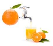 Orange fruktsaft som flödar från stor frukt royaltyfri bild