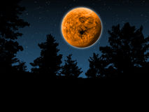 Orange Full Moon. Imaginary Orange Full Moon Night in the Wood Stock Photo