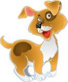 Orange fun dog stock photo