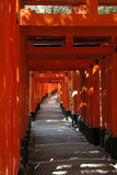 Orange gates. Tunnel in the Inari Shrine in Kyoto,Japan Royalty Free Stock Images