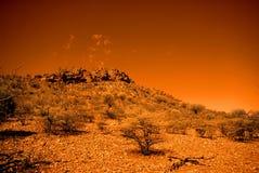 Orange gehende Spur Lizenzfreies Stockbild