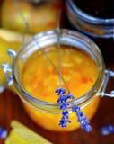 Orange Gelee Lizenzfreie Stockfotos
