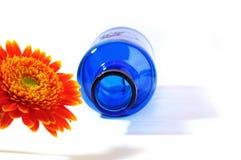 Orange gerbera with blue vase on white background Stock Images