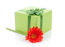 Orange gerbera flower and gift box Royalty Free Stock Photo