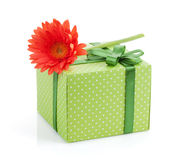 Orange gerbera flower over gift box Stock Photo