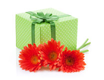 Orange gerbera flowers and gift box Stock Image