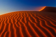 Orange giant dune Stock Photos