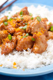 Orange ginger chicken Royalty Free Stock Images