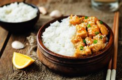 Orange glaze chicken with rice Royalty Free Stock Photography