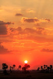 Orange Glow Sunset In A African Landscape Stock Photography