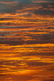 Orange and gold sky Royalty Free Stock Image