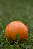 Orange Golf Ball. Sitting in the lush green grass Royalty Free Stock Images