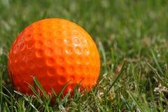 Orange golf ball on the grass. One orange golf ball on the grass Royalty Free Stock Image