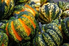 Orange Grün beschmutzte Kürbis-Gruppen-Nahaufnahme-Beschaffenheits-Kiste organisch lizenzfreies stockbild