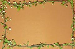 Orange Grün des Feldes Lizenzfreies Stockbild