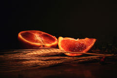 Orange grain composition Stock Image
