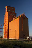 Orange Grain Elevator Stock Photography