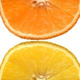 Orange and grapefruit. Royalty Free Stock Photography