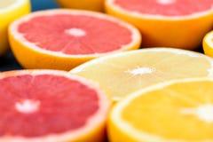 Orange, Grapefruit And Lemon Citrus Fruit Slices. Macro Stock Photo