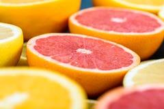 Orange, Grapefruit And Lemon Citrus Fruit Slices. Macro Stock Image