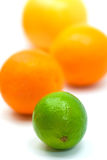 Orange,Grapefruit  and Lime - isolated on white Ba Stock Photos