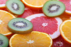 Orange and grapefruit rings as background Royalty Free Stock Photos