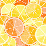 Orange grapefruit seamless pattern Royalty Free Stock Photography