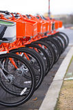 Orange and Gray Bicycles ranked expect cyclists. Orange bikes with baskets in front and polished wheels for paid public use stay lined and one gray bike symbolic Stock Photography